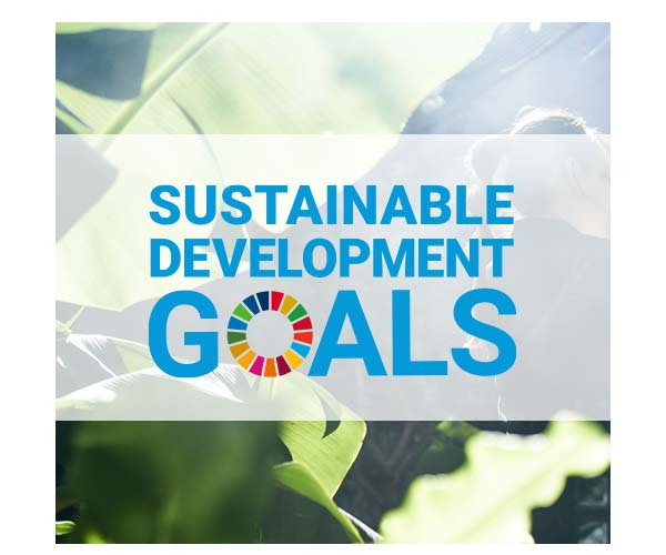 Our Approach to SDGs